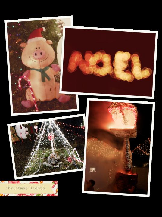 Austin Christmas Lights