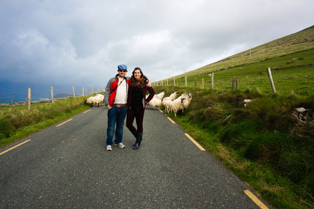 Driving the Dingle Peninsula and getting stopped in the road by